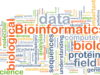 Ardigen - bioinformatics in precision and personalized medicine